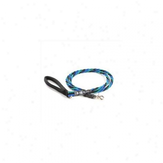 Bungee Pupee Tt307 Large Up To 65 Lbs - Teal And Blue And Black 6 Ft.  Leash