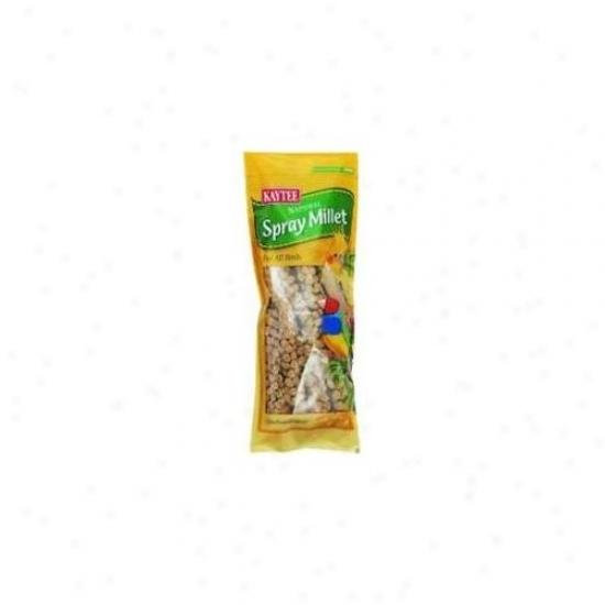 Central Avian & Kaytee Millet Spray 12 Count - 100032204