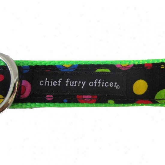 Chief Furry Officer Third tSreet Dog Leash
