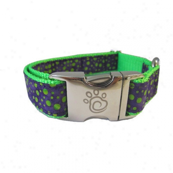 Chief Furry Officer Victory Blvd Dog Collar