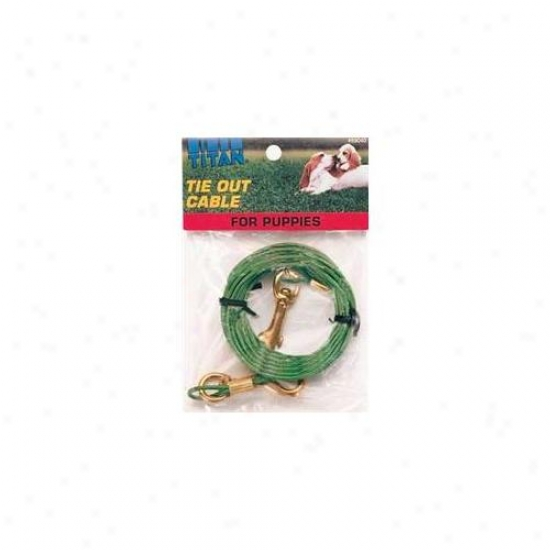 Coastal Pet Produucts Dcp89040 Cable Tieout Puppy