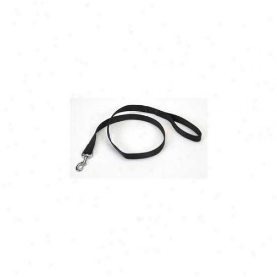 Coastal Pet Products Dcp904blk Nylon Single Lead