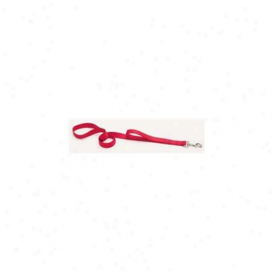 Coastal Pet Products Dcp906hred Nylon Loops 2 Lead