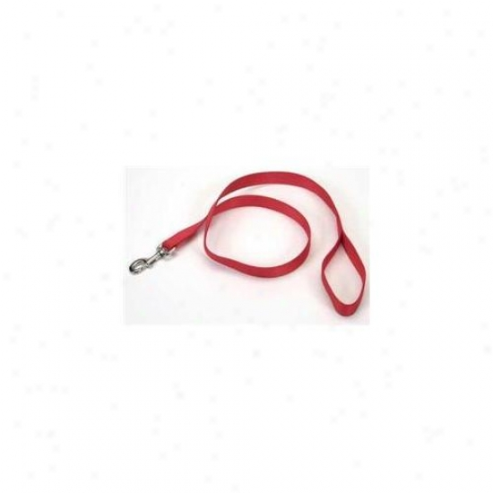 Coastal Pet Productx Dcp906red Nylon Single Layer Lead