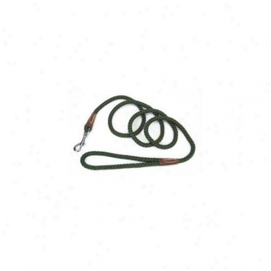 Coastal Pet ProductsD cpr0206grn Remington Rope Snap Lead