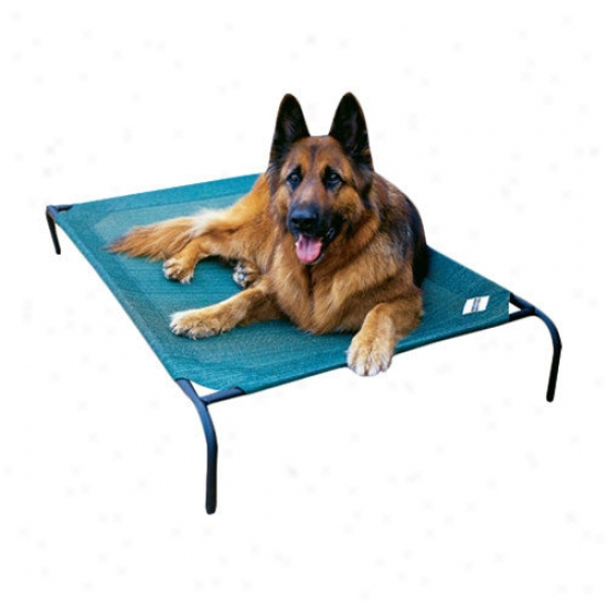 Coolaroo Elevated Indoor/outdoor Pet Cpt Conducive to Large Breeds