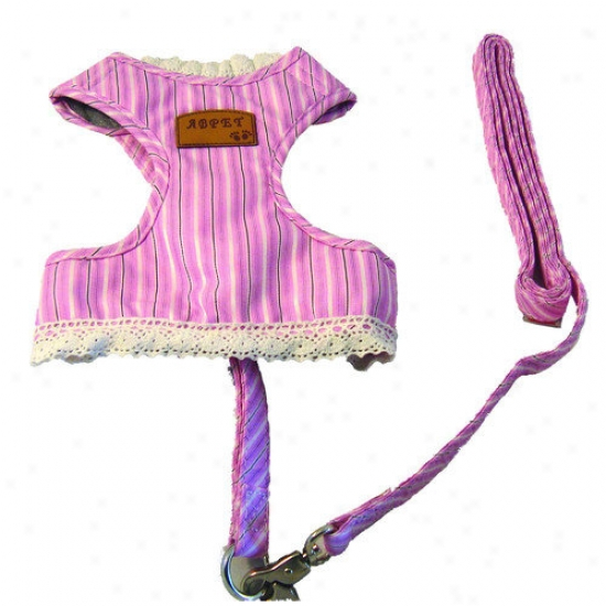Creative Motion Dog Cloth With Leash