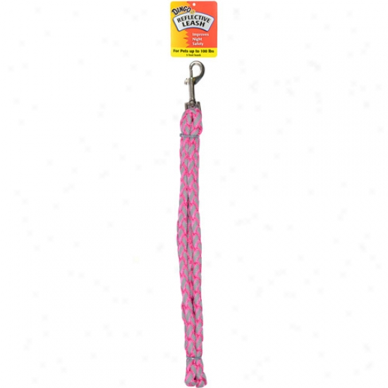 Dingo Reflective Leash, Pink