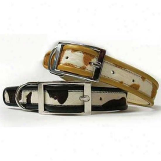 Diva-dog 1567287 Cheyenne Fawn Xs Collar