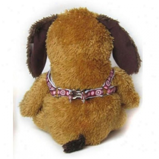 Diva-dkg 2571784 Garden Party Xs/s Harness And Leash