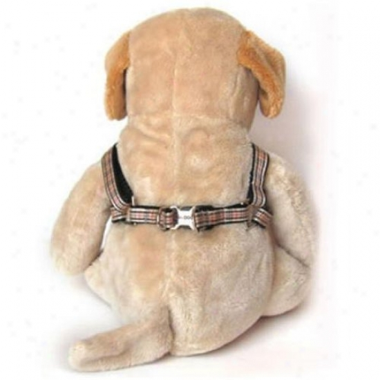Diva-dog 2588640 Grr!bury Xs/s Adjustable Step-in Harness