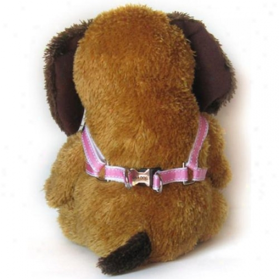 Diva-dog 34731442 Preppy In Pink Xs/s Harness And Leash