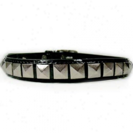 Diva-dog 3887648 Rockstar Xs Collar