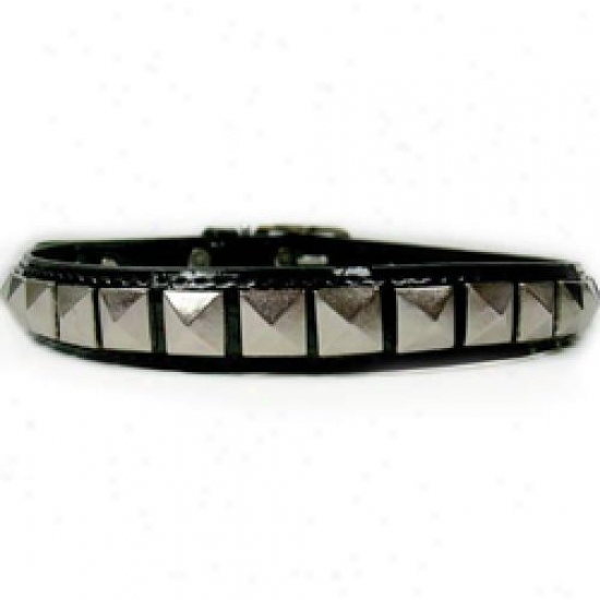 Diva-dog 3887658 Rockstar M Collar