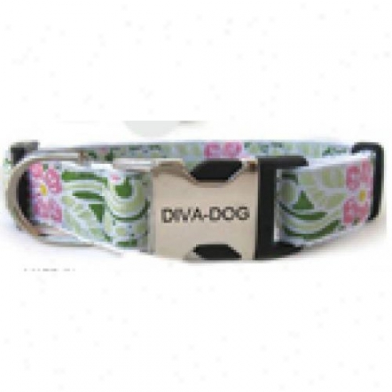 Diva-dog 5055536 Maui Xs/s Adjustable Collar Metal/plastic Buckle