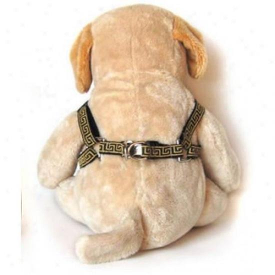 Diva-dog 5055450 Caesar Xs/s Hafness And Leash