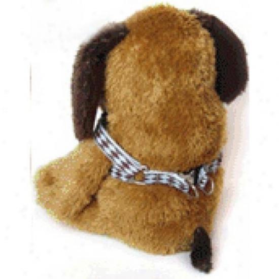 Diva-dog 5055592 Harlequin Choc On Blue Xs/s Harness And Leash