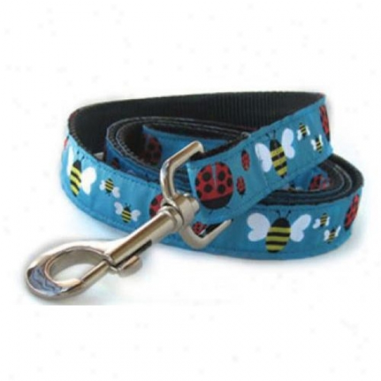 Diva-dog 5404937 Wife Bugs And Bumble Bees M/l Leash