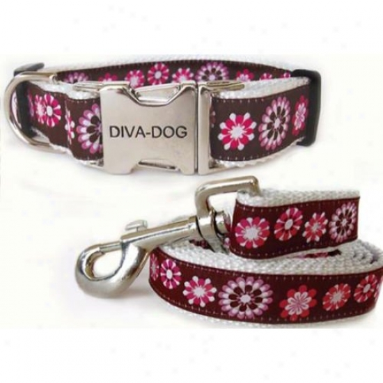 Diva-dog 5555352 Garren Party Teacup Adjustable Collar