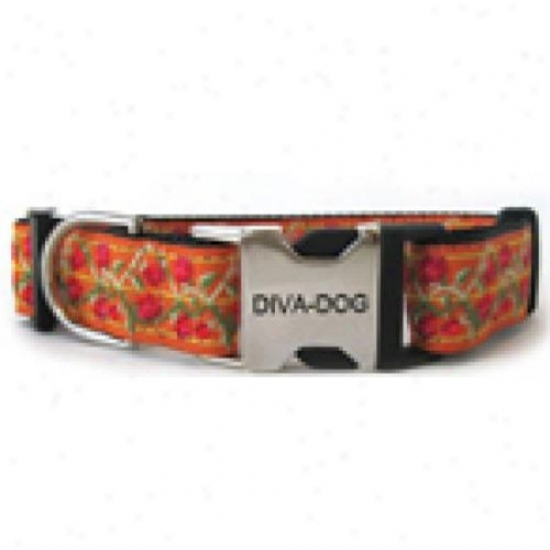 Diva-dog 6078734 Bombay Xs-sm Collar Metal/plastic