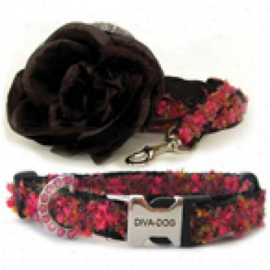 Diva-dog 6248767 Coco Xs-sm Collar And Tie Set Metal/plastic Buckle