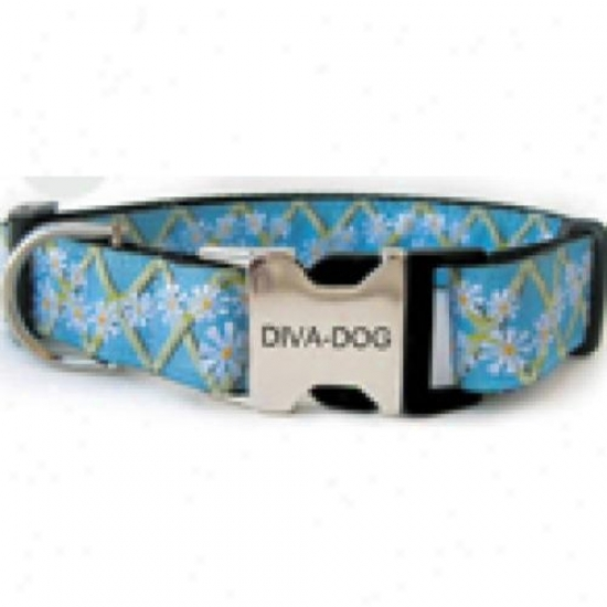 Diva-dog 6266099 Daisy M/l Adjustable Collar Metal/plastic Buckle