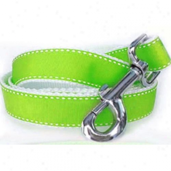 Diva-dog 7632576 Preppy In Lime Xs/s Leash