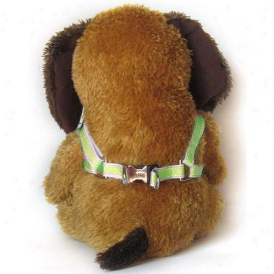 Diva-dog 7632597 Preppy In Linden Xs/s Adjustable Step-in Harnexs