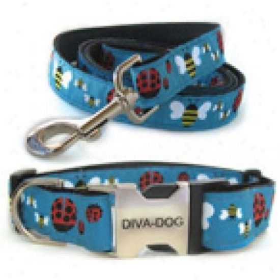 Diva-dog 8903295 Lady Bugs And Bumble Bees M/l Collar And Leash Metal/plastic Buckle