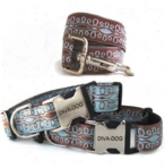 Diva-dog 8903473 Calligraphy Brown On Blue M/l Collar And Leash Metal/plastic Buckle