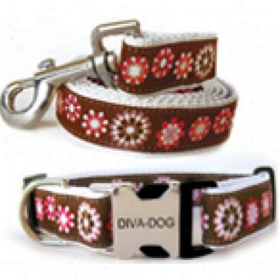 Diva-dog 8903570 Garden Party Xs/s Collar And Leash Metal/plastic Buvkle