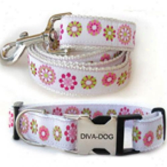 Diva-dog 8904118 Winter Garden M/l Collar And Leash Metal/plastic Buckle