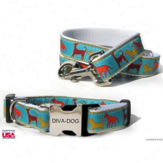 Diva-dog 8961261 Tailgate M/l Collar And Leash Metal/plastic Buckle