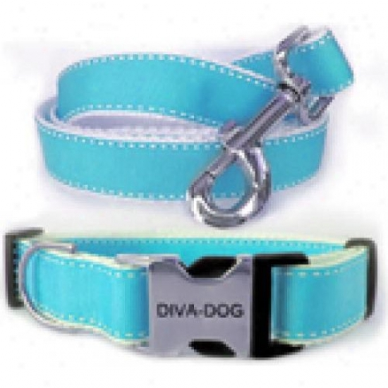 Diva-dog 9020857 Preppy In Blue M/l Collar And Leash Metal/plastic Buckle