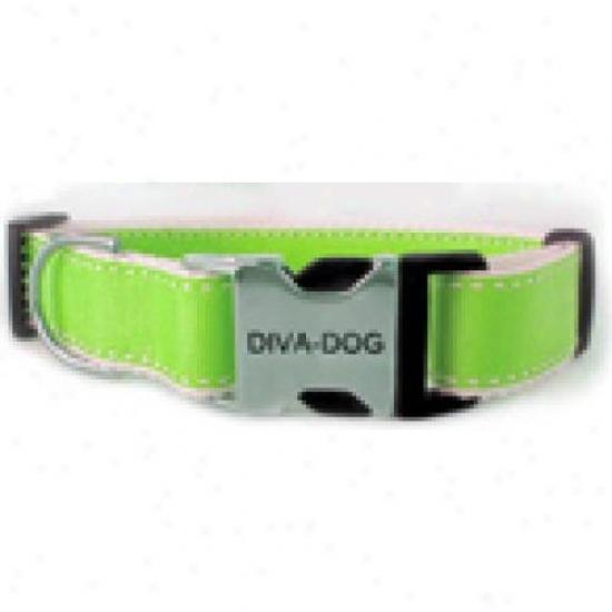 Diva-dog 9020863 Preppy In Lime Xs/s Adjustable Collar Metal/plastic Buckle