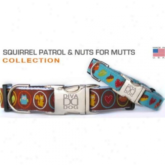 Diva-dog 9320791 Nuts For Mutts Teacup Collar