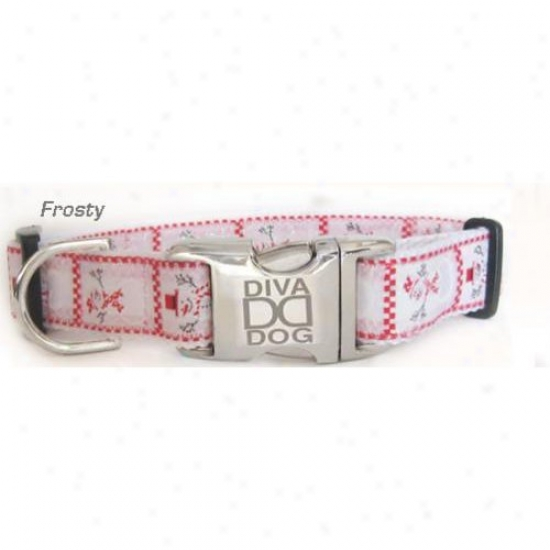 Diva-dog 9609685 Frotsy M/l Put a ~ on And Leash