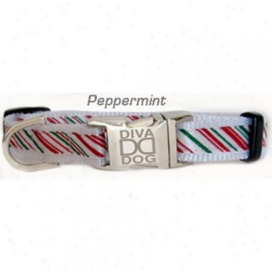 Diva-dog 9609787 Peppermint Stick Xs/s Ring And Leasb