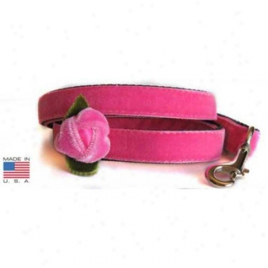 Diva-dog Dd34 Rosebud Teacup Leash