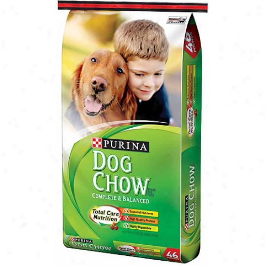 Dog Chow Complete & Balanced Dog Food, 46 Lbs