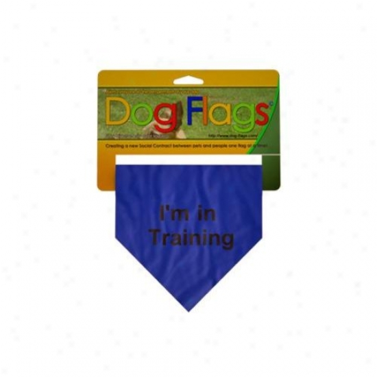 Dog Flags Bf-0005 Blue In Training Flags