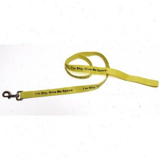 Dog Flags Yl-0007 Yellow I'm Shy Please Give Me Space Leash