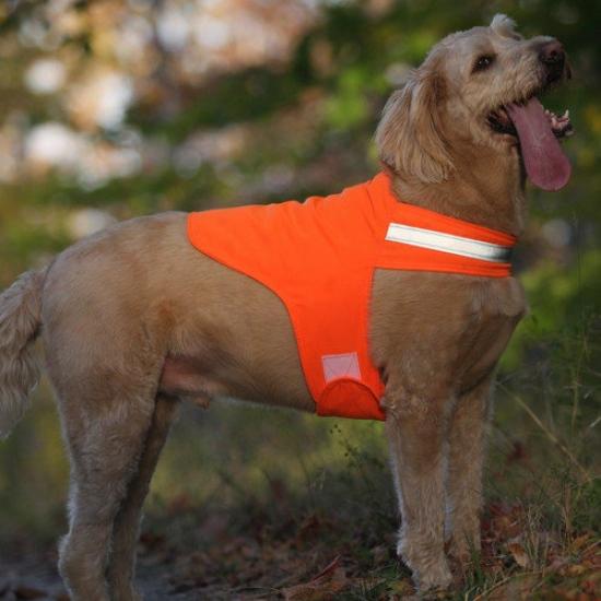 Dog Not Gone Safety Dog Vest
