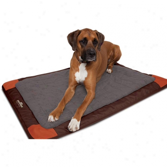 Dog Whisperer With Cssar Millan Travel Mat For Dogs Up To 110 Lbs