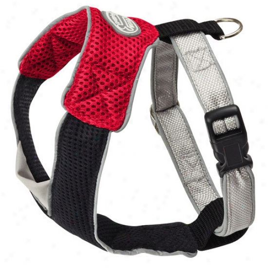 Doggles Dog Wear Mesh Harness In Red And Dark