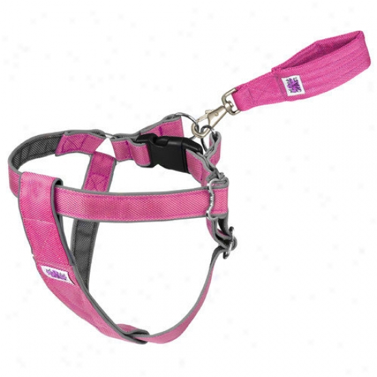 Doggles Mutt Gear  Dog Measure In Harness In Pink And Gray