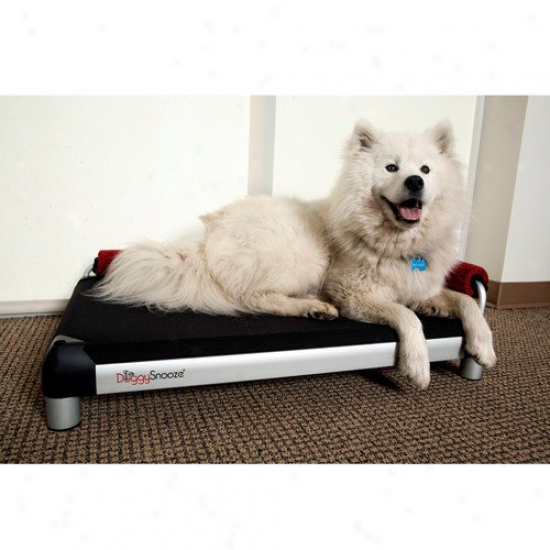 Doggysnooze Snoozelounge Dog Bed With Long Legs