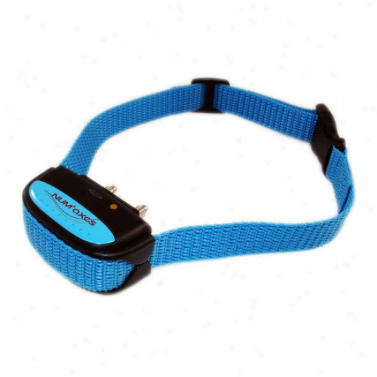 Dogtek Nobrak Pulse Bark Hinder Collar