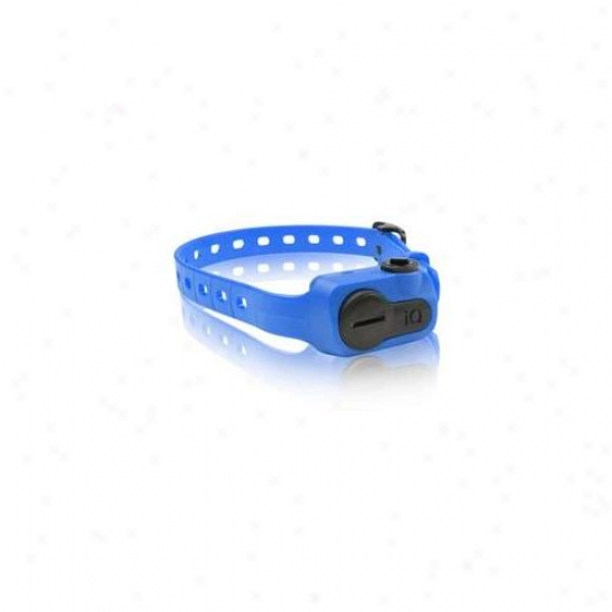 Dogtra Iq-bark-blu Iq No Bark Collar Blue
