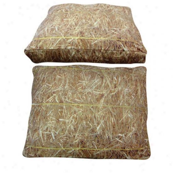 Dogzzzz Rectangle Hay Dog Bed